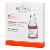 Norel Acne – Antibacterial spot gel – Антибактериальная сыворотка против акнэ локального применения