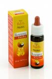 Guna Цветы Баха RESOURCE ENERJOY20 ml бутылочка с пипеткой энергия и жизненная сила