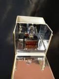 Gianfranco Ferre Diana de Silva parfum 7.5 мл