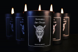 Owl By Glasslight Invisible Abu Dhabi CANDLE 185g