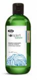 Lisap Milano Purifying shampoo шампунь против перхоти 250мл 1100570000017